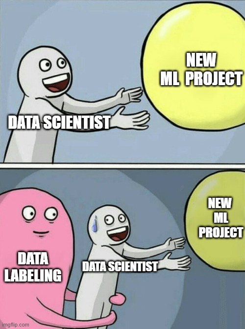 Data Labeling meme